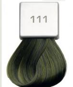 Berrywell 111 Зеленый концентрат